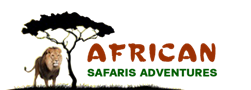 African Safaris Adventures